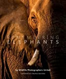 Remembering Elephants -