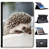 """Fancy A Snuggle Hedgehog In Pot Faux Leather Case Cover/Folio for the New Apple iPad 9.7"""" (2018 Version)"""