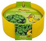 Die Maus Kressegarten f. Kinder kompl. mit Saat und Kreimschale