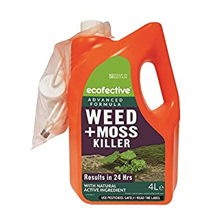 Ecofective Path & Patio Weed & Moss Killer 4L Ready to Use
