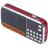 apore portátil FM Radio Altavoz MP3reproductor de música con Micro SD tarjeta USB Ranura de disco para PC iPod iPhone Samsung