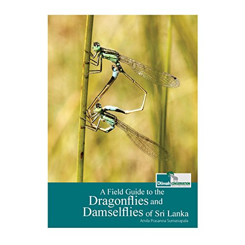 A Field Guide to the Dragonflies and Damselflies in Sri Lanka (English Edition)