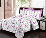 Bombay Dyeing Floral Fiesta 180 TC Cotton Double Bedsheet With 2 Pillow Covers-Pink