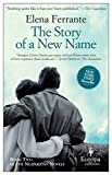 The Story of a New Name: Neapolitan Novels, Book Two