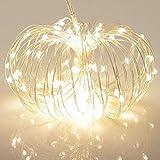 100 LED Exterieur KooPower Guirlandes Lumineuses à Piles avec Télécommande & Minuteur - (8 Modes de Fonctionnement, Etanche IP65,11M Câble en Cuivre, Blanche Chaude)