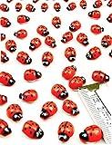 HomeTools.eu – 60 Pezzi – Divertente Coccinella Portafortuna 3D in Legno Adesivo Autoadesivo, in Vero Legno, Dipinto, Confezione da 60 Pezzi