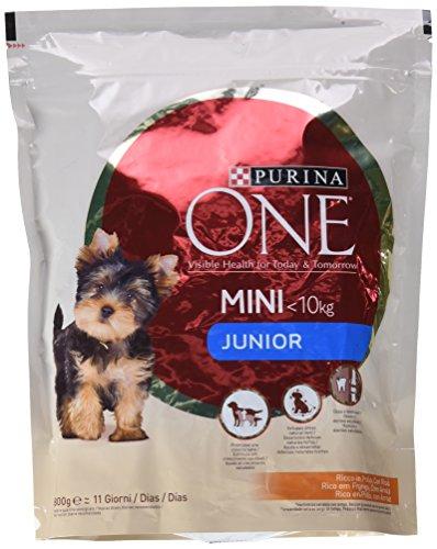 Purina ONE Mini Pienso Perro Junior Pollo Arroz 8
