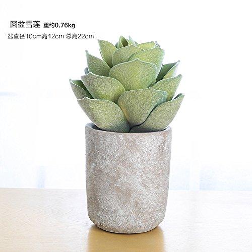 KIKIXI Nordic Harz simulation Anlage fake Topfpflanzen multi - Fleisch grün Bonsai cactus Schlafsaal Wohnzimmer kleine Dekoration, rundem Becken snow Lotus