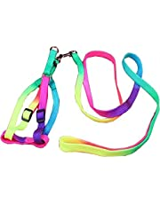 Pets Empire Colourful Adjustable Nylon Puppy Leash Harness, Small