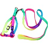 Pets Empire Dog Cat Rainbow Colorful Adjustable Nylon Puppy Leash Harness Size- Small