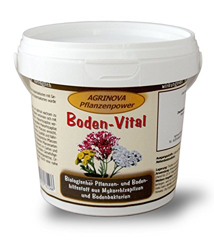 Boden-Vital 100 g - Endomykorrhiza-Pilze und Bodenbakterien zur Pflanzenstärkung und Vitalisierung des Bodens