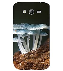 printtech Nature Mushroom Back Case Cover for Samsung Galaxy Grand Neo Plus / Samsung Galaxy Grand Neo Plus i9060i