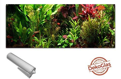 Küchenrückwand von DekoGlas 125x50cm Spritzschutz Blattpflanzen