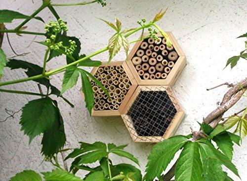 Insektenhotel Bienenhotel Insektenwabe - 2