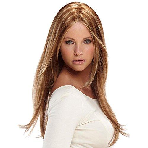 Peut être teint à chaud cheveux longs cheveux raides perruque perruque brun haute température casquette de soie