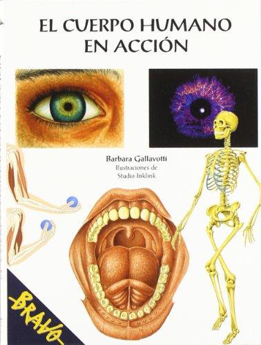 El cuerpo humano en accion / The Human Body in Action par BARBARA GALLAVOTTI