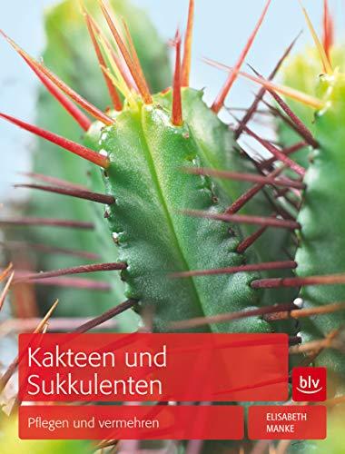 Kakteen und Sukkulenten: Pflegen und vermehren (Prio A)