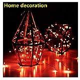 LED Lichterkette 5M 50er Kaiki LED String Licht Weihnachtsbeleuchtung für Outdoor Innenbeleuchtung Garten Hochzeit Party Dekor(Rot,Einheits Größe)