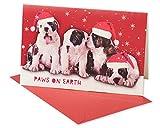 American Greetings Weihnachten 5772280Hunde in Hats Boxed Karten, farbenreiche
