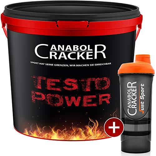 Testo Power, Whey Proteine Creatin Shake, 2600g Dose, Himbeer-Frucht oder Cappuccino Geschmack Eiweißpulver + Shaker (Himbeer-Frucht)