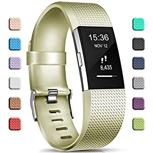 Gogoings Correa para Fitbit Charge 2 Pulsera Ajustable Correa de Reemplazo Deportivo Compatible con Fitbit Charge2 para… 11