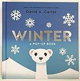 Winter : A Pop-Up Book