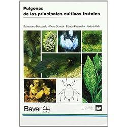 Pulgonesdelosprincipalescultivosfrutales