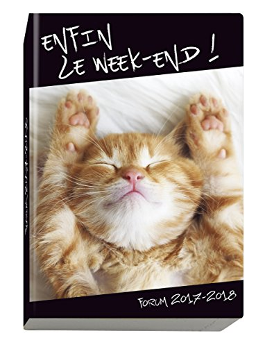 Exacompta Funny Pets Cat Diary Visual 2017Forum August to July 2018School 12x 17cm