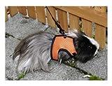 Kerbl  Meerschweinchengeschirr mit flexibler Leine 120cm