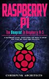 RASPBERRY PI: THE BLUEPRINT TO RASPBERRY PI 3: A Beginners Guide: Everything You Need to Know for Starting Your Own Projects (CyberPunk Blueprint Series)