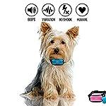JAFAA Anti Barking Dog Collars Stop Dog Barking Best Anti Barking Device No Shock Anti Bark Collar Bark Control Training… 11