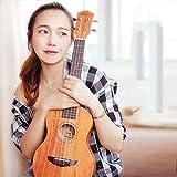 Mkulele Ukulele / 23 pollici principiante Studente Femmina Yurik Ukelele Piccola chitarra