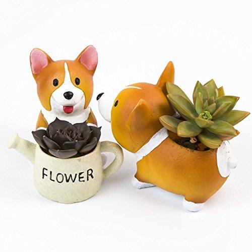 SUN-E Lovely Corgi Hund Form Pflanze Decor Sukkulenten Deko Blumen Topf 2 im Set …
