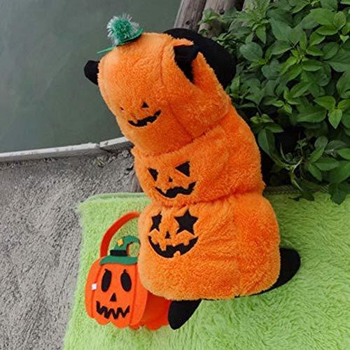 FORMEG Hundekleidung Haustier Halloween Kürbis Transfiguring Haustier Hund Kleidung Welpen Kätzchen Hoody Cute Dog Coat Kostüm Hunde Cat Party Cosplay - Cute Halloween Cat Kostüm