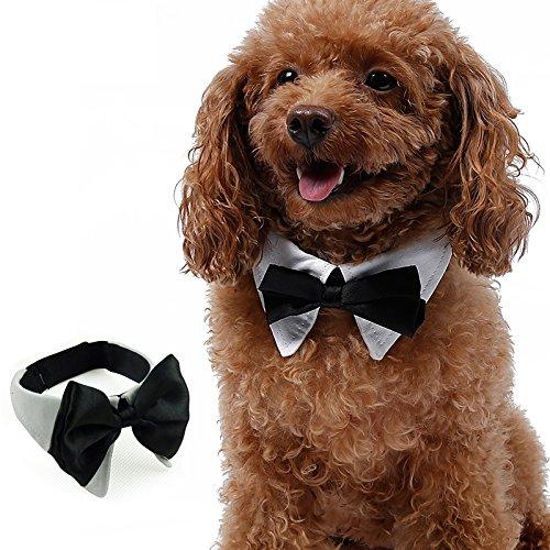 Kostüme In Haustiere 50 (Septven Gute Qualität Gentleman aussehen Haustier Fliege Kragen Haustier Schal Handtuch Krawatte (XL,)