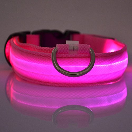 vangold-nylon-pet-dog-collar-night-safety-led-light-up-flashing-glow-in-the-dark-lighted-circular-pe
