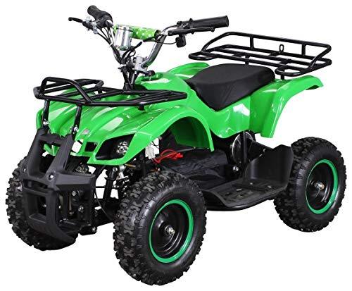 Elektro Kinder Miniquad TORINO 800 Watt ATV Pocket Quad Kinderquad Kinderfahrzeug (Grün)