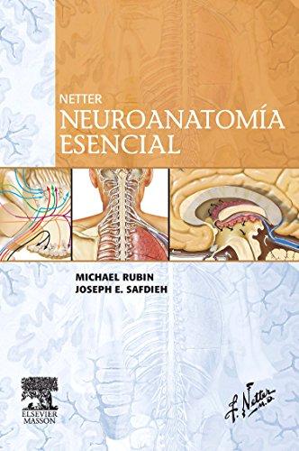 Netter, neuroanatomía esencial por Michael Rubin, Joseph E. Safdieh