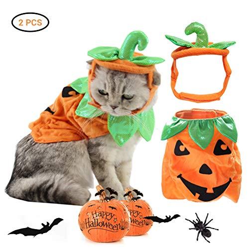 Qeedio - Costume di Halloween da Gatto, a Forma di Zucca
