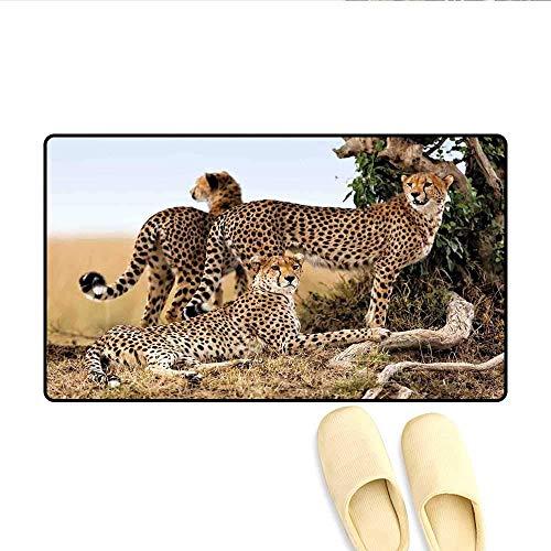 LIS HOME Fußmatten Geparden Mutter und Baby Zwei, die nach lebensmittelgefährlichen exotischen Tieren suchen, fertigen Badematte mit Rutschfester Rückseite Tan Black besonders an