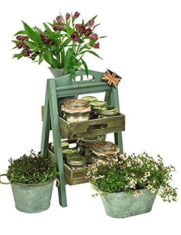 east2eden Vintage Rustic Display Shelf Unit Wood Florist Shop Farm Market Plant Pot Holder (Cambridge Blue 2 Tier