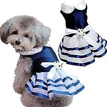 Dingang cucciolo di cane tutù gonna di pizzo gatto principessa vestito piccolo cane vestiti