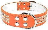 Berry 3reihig Strass Leder Halsbänder Bling Pet Halsband