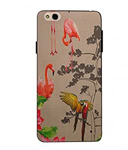 Case Cover Printed Colorful Soft Back Cover For InFocus Bingo 50 Plus