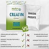 Nutri-Plus Vegan Sports Kreatin Pur 100 + Dosierlöffel – Ultrafeines Creatin-Monohydrat 500g – Neutral – Ohne Zusatzstoffe - 4