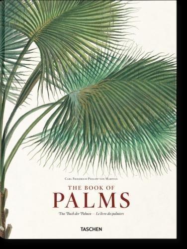 Martius. Le livre des palmiers PDF
