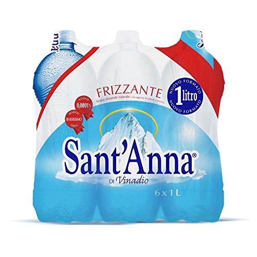 SantAnna Blister dAcqua Minerale Frizzante Confezione da 6 Bottiglie di Plastica Ciascuna da 1 litro