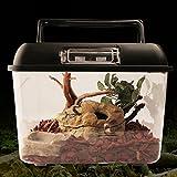 Sue Supply - Vasca quadrata ad alta trasparenza per allevamento rettili, scatola per insetti, contenitore per cibo per tartarughe serpenti, vasca per pesci e piccoli animali