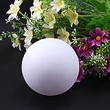 AGPtek LED Bola Flotante para Piscina, Decoración de Jardín Estanques Fiesta, Operada por Pilas Blanca Luz Constante