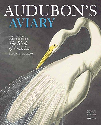 Audubon's Aviary: The Original Watercolors for The Birds of America - Audubon Birds Of America